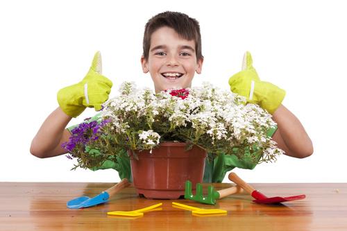 Little boy planting flowers Stock Photo