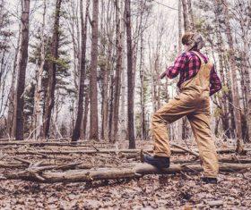 Lumberjack in Woods Stock Photo