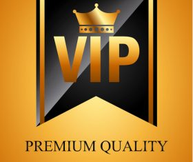 Luxury VIP background design vector 01