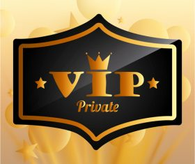 Luxury VIP background design vector 02