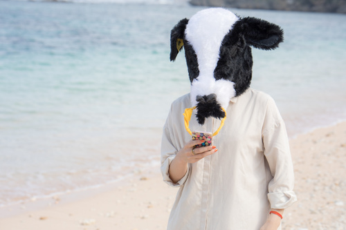 Man with a bull head mask Stock Photo 03