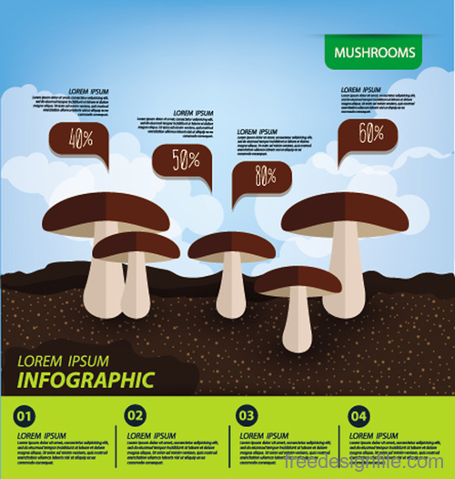 Mushrooms infographic template vector material