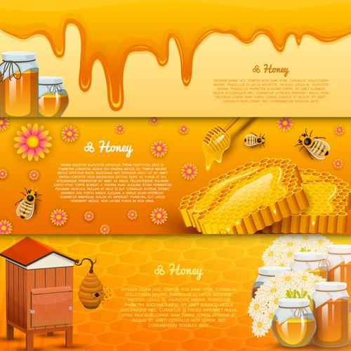Natural honey banners design vectors 01