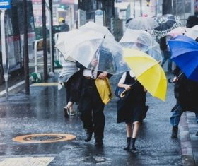 People with umbrellas on the rainy streets Stock Photo 01