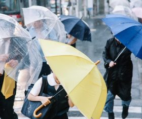People with umbrellas on the rainy streets Stock Photo 04