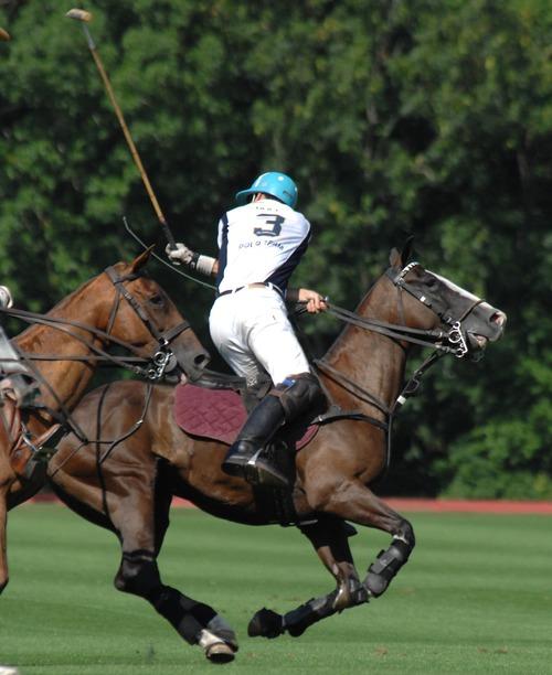 Polo sport Stock Photo 03