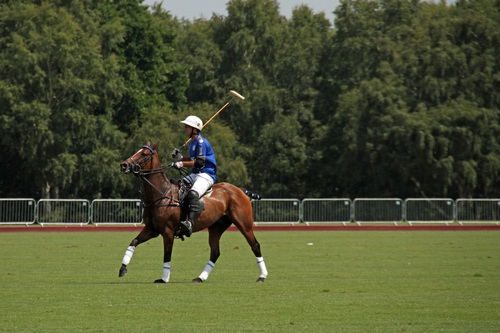 Polo sport Stock Photo 05