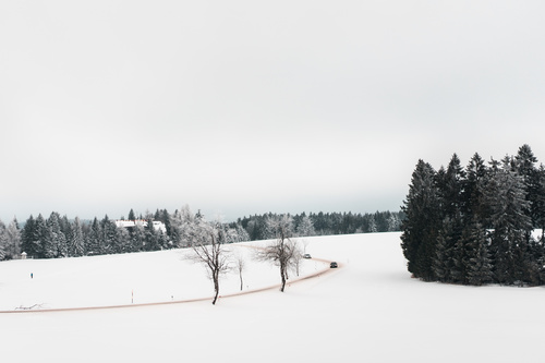 Road and Fields Covered with Snow Stock Photo