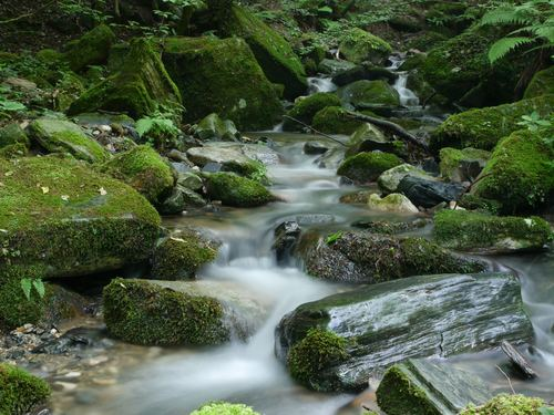 Stream in the silent valley Stock Photo 02