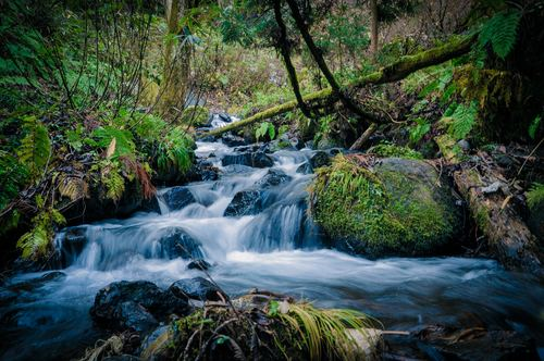 Stream in the silent valley Stock Photo 04