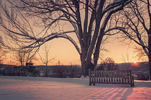 Sunrise in a Snowy Park Stock Photo