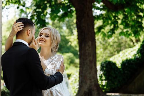 Taking wedding photo Stock Photo