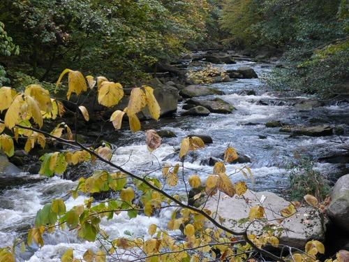 Torrential mountain streams Stock Photo 03