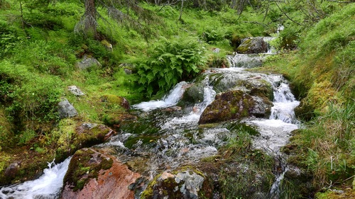 Torrential mountain streams Stock Photo 07