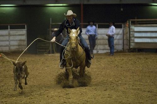 West cowboy Stock Photo 02