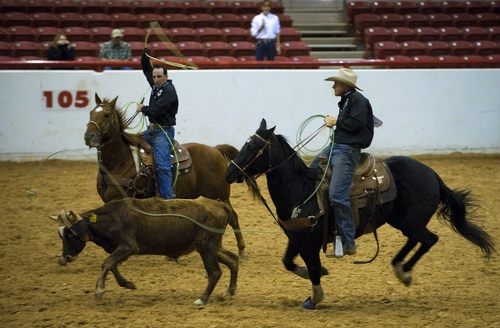 West cowboy Stock Photo 03