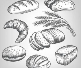 Wheat with bread hand drawn vector