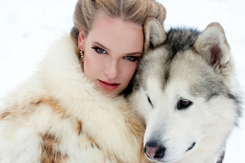 Young woman with wolf dog in snow Stock Photo 07