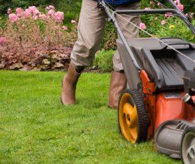 gardener garden landscaping Stock Photo 01