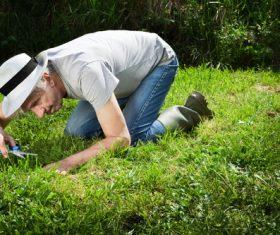gardener garden landscaping Stock Photo 02