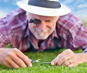 gardener garden landscaping Stock Photo 06