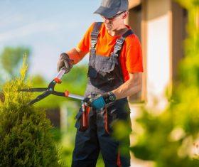 gardener garden landscaping Stock Photo 10