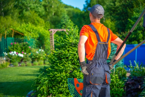 gardener garden landscaping Stock Photo 11