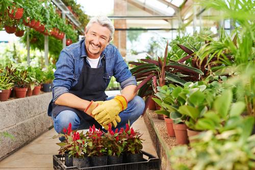 gardener garden landscaping Stock Photo 13