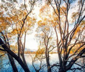 Autumn scenery of Queenstown New Zealand Stock Photo 10