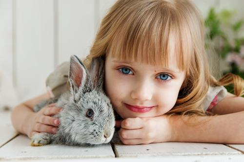 Beautiful little girl and rabbit Stock Photo