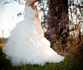 Bride wearing wedding dress Stock Photo 04