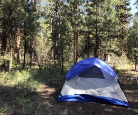 Camping tent Stock Photo 06