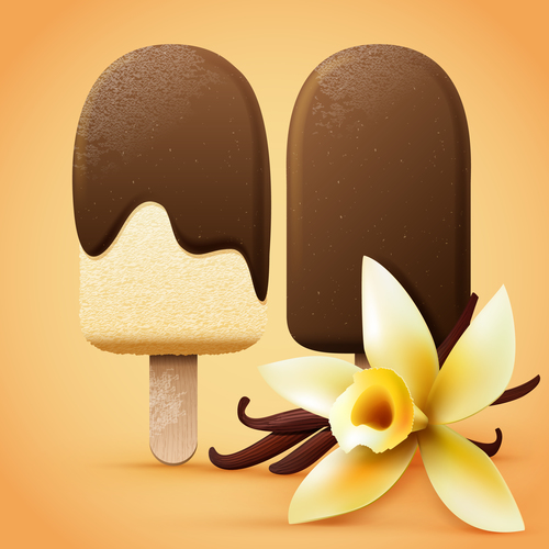 Chocolate ice cream with vanilla flavour vector