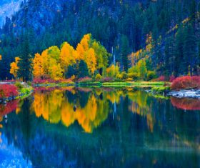 Lake nature landscape mountain forest Stock Photo 04