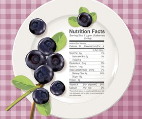 Nutrition facts blueberry vector