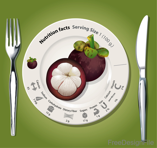 Nutritional facts mangosteen vector