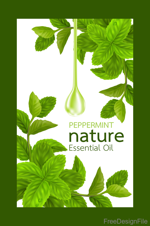 Peppermint natural essential oil cosmetics poster vector