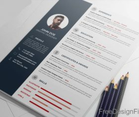 Professional Resume CV PSD Template