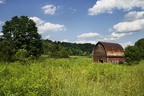 Rusty Barn in Field Stock Photo