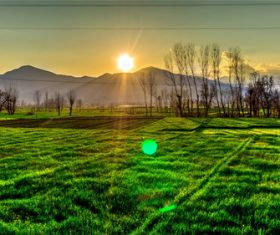 Stock Photo Vibrant green pastoral scenery 03