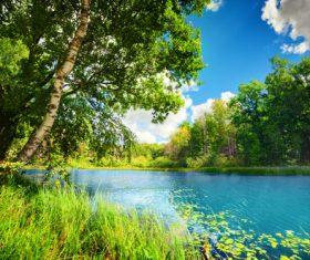 Stock Photo Woods lake nature landscape 05