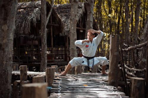 Taekwondo Kung Fu Pose Stock Photo