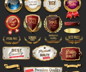 Vintage retro premium quality golden badges and labels vector 02