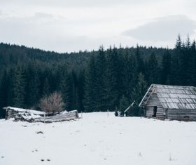 White winter snow landscape and building Stock Photo 05