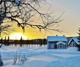 White winter snow landscape and building Stock Photo 09