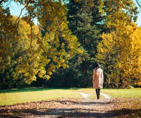Woman Walking in a Park in Autumn Stock Photo