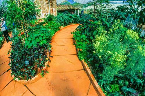 greenhouse Stock Photo 01