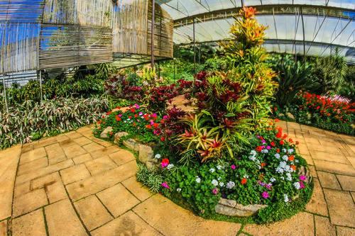 greenhouse Stock Photo 02