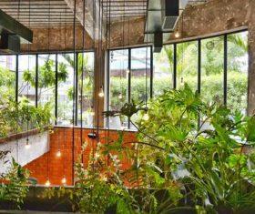 greenhouse Stock Photo 08