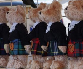 plush teddy bear Stock Photo 01